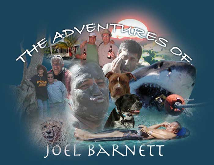 Welcome to the Adventures of Joel Barnett